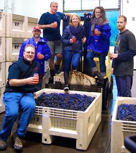 2013 Oregon Harvest Cornerstone